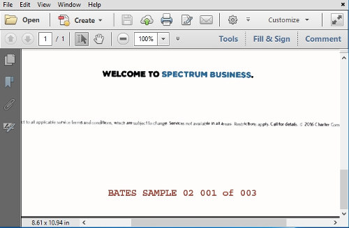VDOCS Bates Stamper Preview